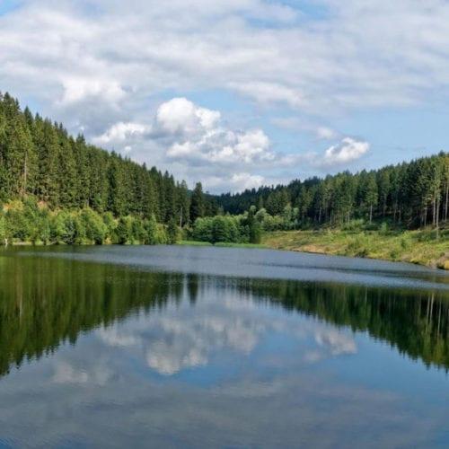 Naturparadies Harz